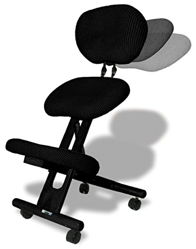 cinius Chaise Ergonomique Professionnelle avec Dossier, Couleur Noir
